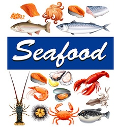 Different kind of seafood and text vector image