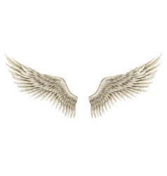 Fantasy style hand-drawn wings angel vector