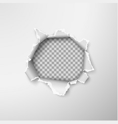 hole in empty paper sheet rough torn paper edges vector image