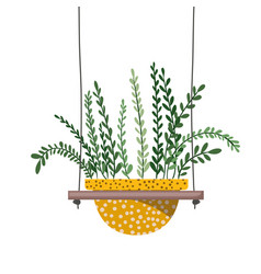 Houseplant with potted on shelf isolated icon vector