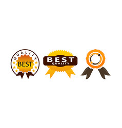 template emblem best quality set vector image