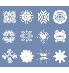 set of 12 snowflakes vector image vector image