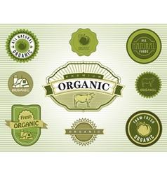 Set of organic food labels vector