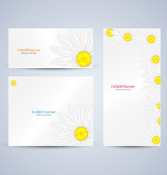 flowers brochure template vector image