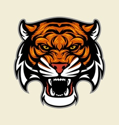 Tiger head mascot vector