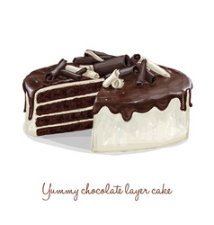 chocolate layer cake vector image