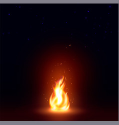 isolated abstract realistic fire flame image vector image