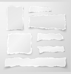 set of torn paper pieces scrap paper object strip vector image vector image