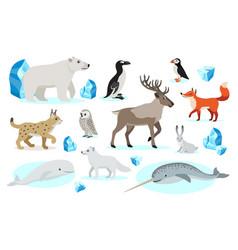 set polar animals icons isolated on white vector image