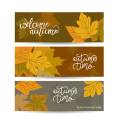 set three horizontal banners with autumn maple vector image