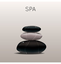 spa with stones vector image