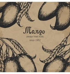 Mango tree vintage design template Botanical vector image vector image