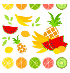 A set of colored insulated delicious fruits on a vector