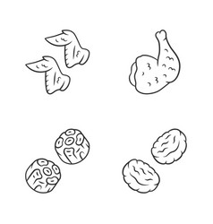 Butchers meat linear icons set chicken wings ham vector