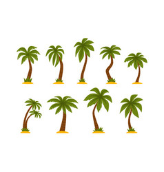 flat set cartoon tropical palms high vector image