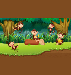 monkey in jungle scene vector image