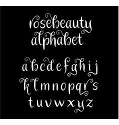 rosebeauty alphabet typography vector image vector image