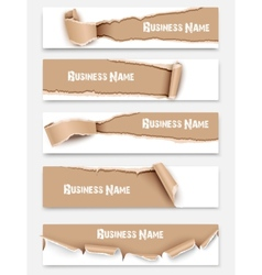 Set of torn paper banners vector image vector image