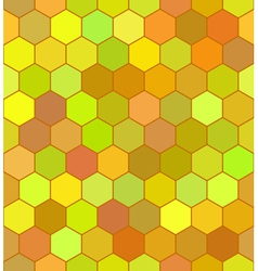 Honeycomb color pattern vector image