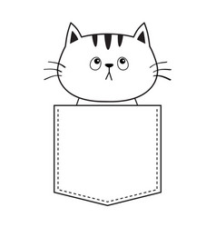 Cat in the pocket looking up doodle linear sketch vector