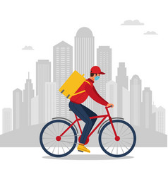 Courier bicycle delivery service vector