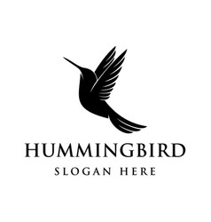 hummingbird logo design vector image