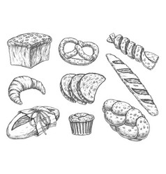 set isolated bread food sketches bakery vector image