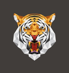 Tiger head polygon geometric vector