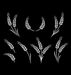 abstract wheat ears icon logo food set vector image