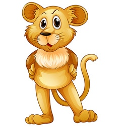 Cute lion baby standing vector