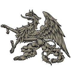 Heraldic griffin vector