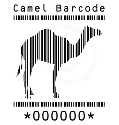 camel silhouette in barcode vector image