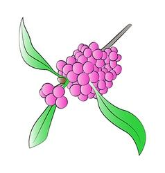 Beautyberry vector