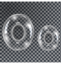 Bubbles letters O vector image vector image