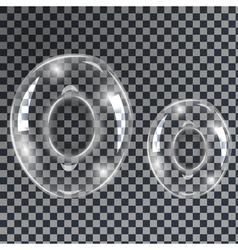 Bubbles letters O vector image