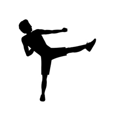 silhouette man martial arts kick vector image