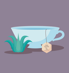 cup tea of herbs isolated icon vector image
