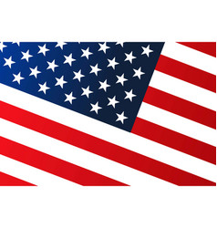 national flag the united states america with vector image