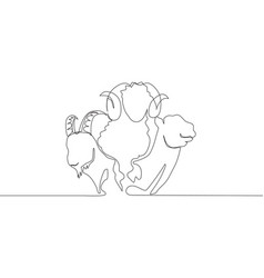 One single line drawing camel goat and sheep vector