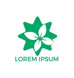 star leaf logo design vector image