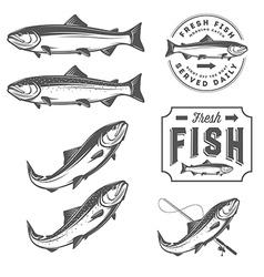 Vintage fresh fish salmon embles design elements vector image vector image