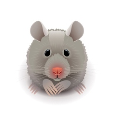 Hamster isolated on white vector image vector image