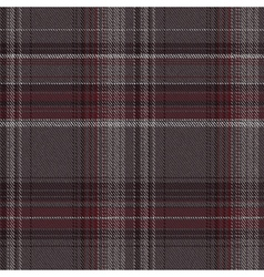 Check fabric vector image vector image