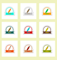 Label icon on design sticker collection spice vector