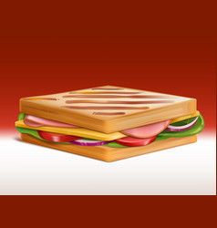 sandwich with meat cheese and vegetables vector image