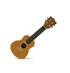 ukulele - hawaiian musical instrument vector image