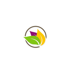 colored leaf beauty organic logo vector image