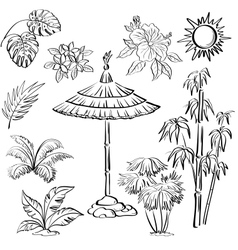 Exotic objects set outline vector image