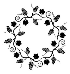 black and white decoration pattern of grape vine vector image