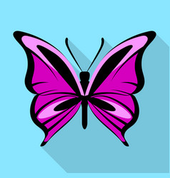 black purple butterfly icon flat style vector image